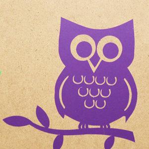 1005 - Owl
